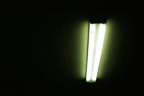 Artificial Light by Artificial Light Murray Park Photography