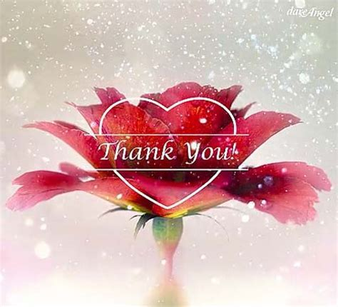 Thank You Cards, Free Thank You Wishes, Greeting Cards