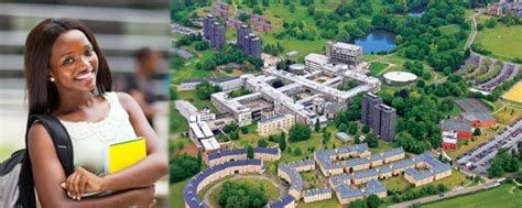 Of Essex Mba Fees by Of Essex Academic Excellence Scholarship