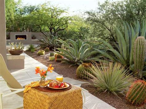 desert backyard how to give your desert backyard southwestern flair the