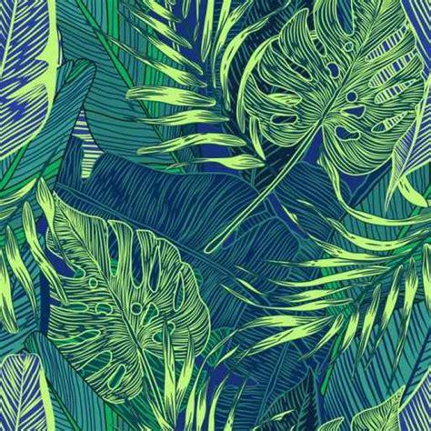 tropische tapete tapete tropische pflanzen pixers 174 wir leben um zu
