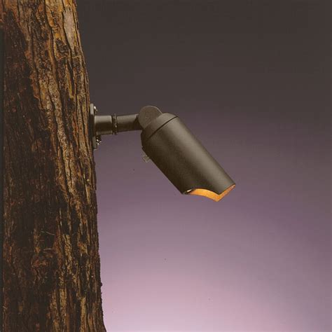 Kichler Low Voltage Lighting Kichler Adjustable Low Voltage Tree Light 15087azt Destination Lighting