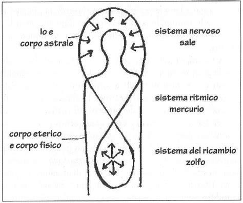 massaggio nascosta cenni sulla medicina antroposofica associazione italiana