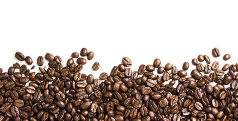 coffee seed wallpaper coffee beans png image