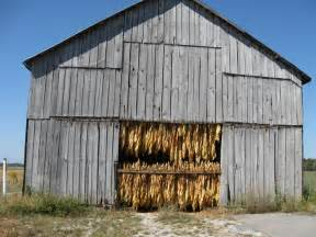tobacco barn barns