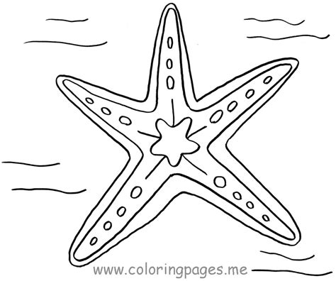 starfish coloring pages starfish coloring pages