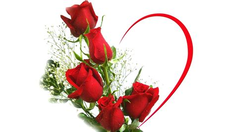 images of love flowers red flower love wallpaper 198390