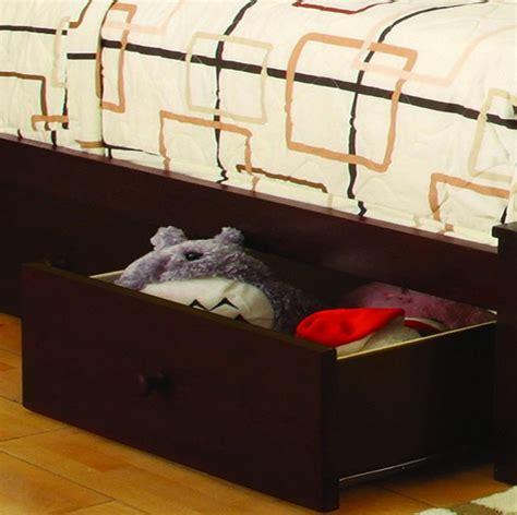 Bunk Beds Canberra Bunk Beds Canberra Cm Bk605a Canberra Bunk Bed In Oak Canberra Walnut Bunk Bed From Furniture