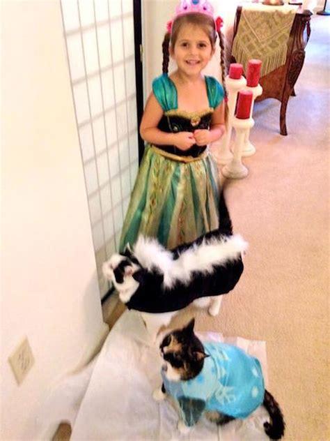 petsmart costumes merovence family pet fashion show