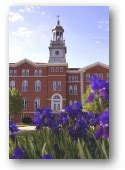 Usm Mba Tuition by Degree Programs Of