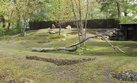 zoologischer garten berlin krokodile fototouren zoo berlin mit aqaurium