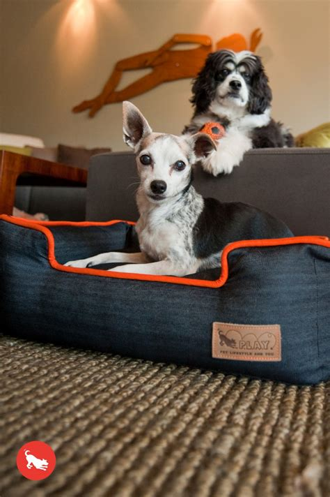 denim dog bed urban denim bumper dog bed care 4 dogs on the go