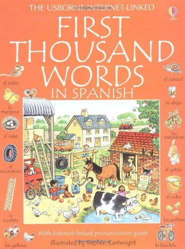libro spanish for beginners usborne spanish for beginners usborne language for beginners lingua e apprendimento panorama auto