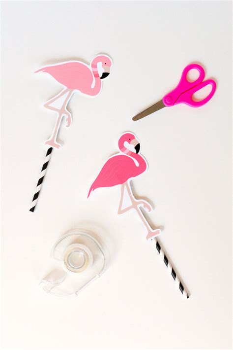 How To Make A Flamingo Out Of Paper - flora and the flamingo the tomkat studio