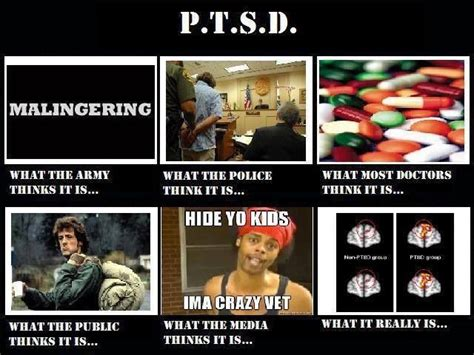 Ptsd Dog Meme - 17 best images about ptsd on pinterest lab rats service
