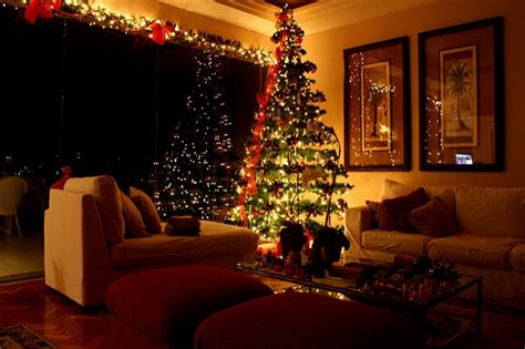taking care of christmas trees how to select and take care of living tree