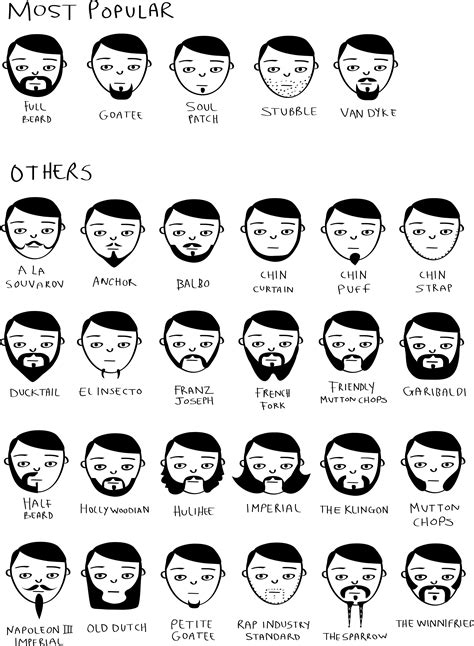 mens hairstyles different types of beards various styles movember beard styles 187 chartgeek com