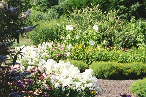 Flower Gardens In Nj 23 Best Images About Perennial Gardens On Pathways Patio And Landscapes