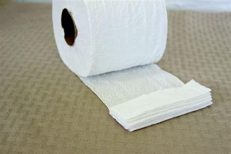 Origami Toilet - diy toilet tissue origami crafts