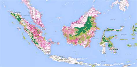 Light On Indonesia how plywood started the of indonesia s forests