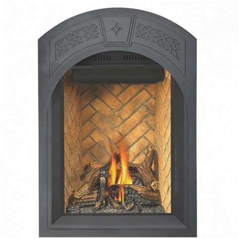 Top Vent Gas Fireplace by Napoleon Gd82nt Paesb Park Avenue Top Vent Gas