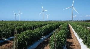 pattern energy puerto rico how wind power can help puerto rico s debt crisis reve