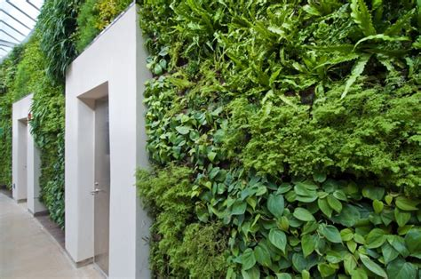 Largest Green Wall In North America To Be Unveiled Green Wall Gardens