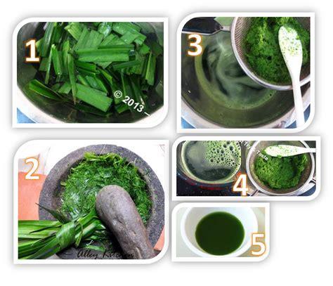 cara membuat zpt auxin alami pengertian air daun suji fungsi daun suji pengertian