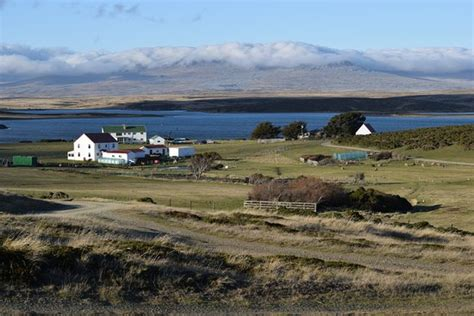 houses to buy darwin looking back to darwin house from darwin hill picture of darwin house east falkland