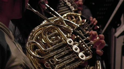 french horns  beginners brands top  horn
