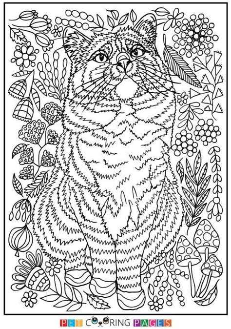 printable domestic cat coloring page ciepa