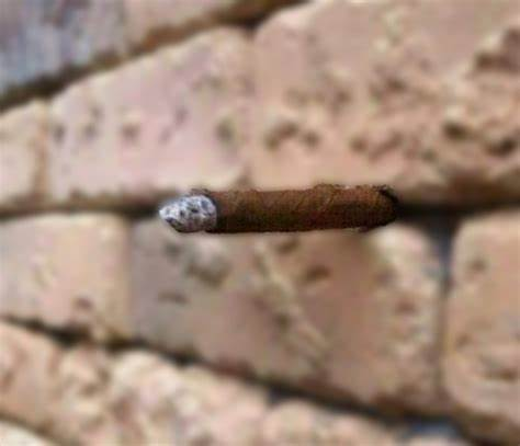 Fantastic Optical Illusion: Just Another Brick in the Wall?