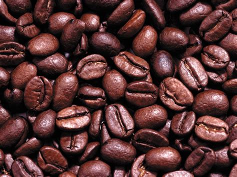 coffee seeds wallpaper hd wallpaper background wallpapers coffee beans images
