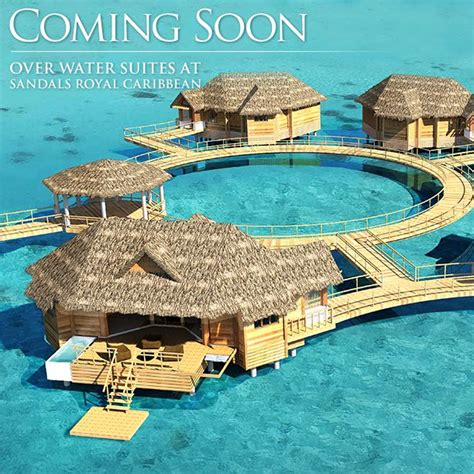 how much are sandals resorts how much are sandals resorts 28 images how much is