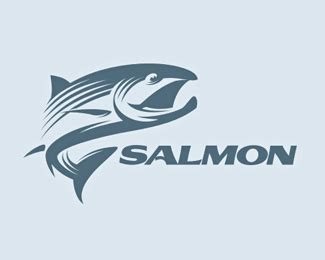 awesome fish logo designs web graphic design bashooka