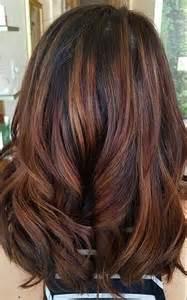 hair color ideas for fall fall hair color simply organic