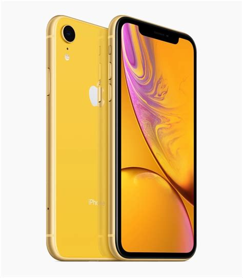 iphone xr colors apple leaks iphone xs and xr names and colors before event