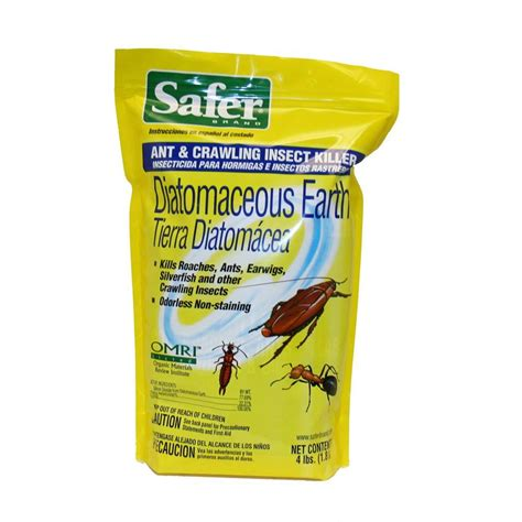 bed bug diatomaceous earth safer brand 4 lb diatomaceous earth ant and crawling insect killer 51702 the home depot