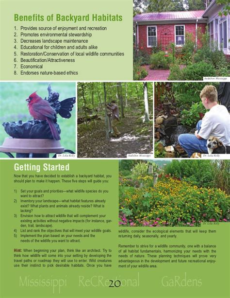 Backyard Wildlife Habitat by Mississippi Establishing A Backyard Wildlife Habitat