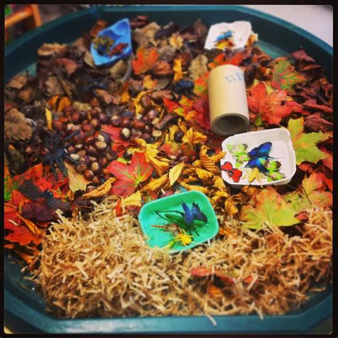 Autumn Years autumn tuff spot early years ideas tuff