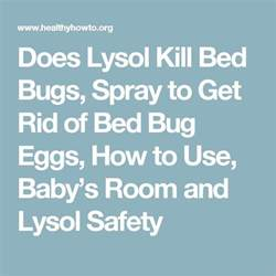 does lysol kill bed bugs best 25 bed bug spray ideas on pinterest bed bugs bed
