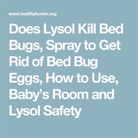 does lysol kill bed bugs will lysol kill bed bugs 28 images does lysol kill bed