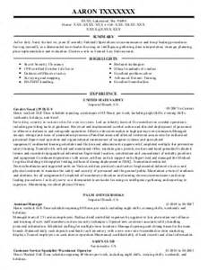 logistics manager resume example u s air force gulf