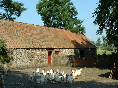 andrew herbert roofing northumberland image gallery 1