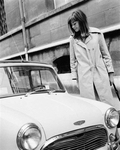 francoise hardy new york times 17 best images about hosiery and modes of transport on