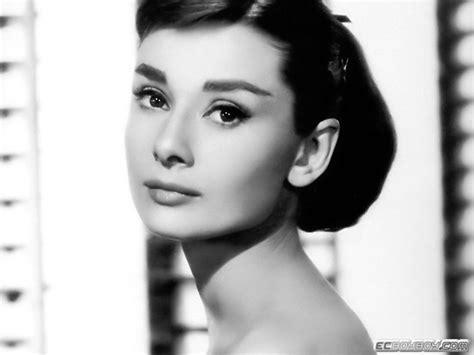 audrey hepburn audrey hepburn everything i learned i learned from the