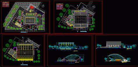 swimming pool semi olympic dwg block  autocad designs cad
