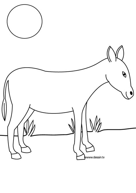free coloring pages of donkey tail
