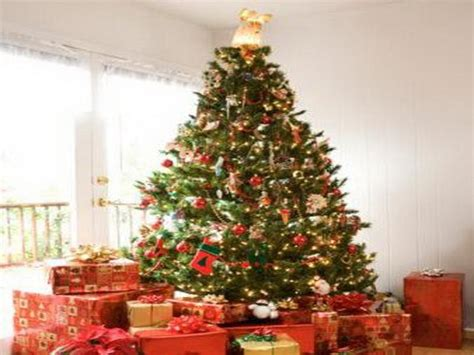 2013 christmas decorating ideas bloombety luxury green christmas tree decorations green