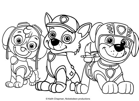 coloring pages of zuma from paw patrol paw patrol zuma coloring kit coloring pages
